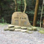 春日山原始林・若草山(342m)