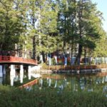 高野山 壇上伽藍 蓮池(はすいけ)・世界遺産