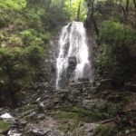 松葉の滝(雄滝・雌滝)松葉のカヤ・静岡県掛川市倉真