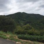 高尾山(675.1m)  笠張山(698m)  菩提山(691m) ・静岡県藤枝市