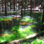 遠州七不思議 まとめ・静岡県遠州地方に伝わる不思議な物語