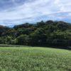 五ヶ山(66m) 五ヶ山B2号墳 ・静岡県袋井市