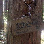 竜頭山(752.3m)大竜頭 小竜頭・愛知県新城市