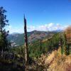神野山(938m) 御園富士(909m)・愛知県北設楽郡東栄町