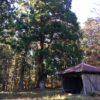 駒山(855m)・愛知県豊田市牛地町