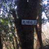高畑(762.2m)・愛知県新城市四谷
