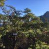 尾籠岩山(710m)・愛知県北設楽郡東栄町
