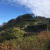 稲荷山(76m)・静岡県浜松市北区細江町三和