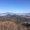 伊豆三山「城山(342.3m)・葛城山(452.3m)・発端丈山(410m)」大男山(207m)