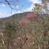 高塚山(1621.1m) 岩岳山(1369.6m) 竜馬ヶ岳(1500.9m)・縦走