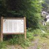 鯉ヶ滝(恋仇)・静岡県静岡市葵区梅ヶ島