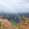 高ドッキョウ(1133m) 貫ヶ岳(897m)・山梨県南巨摩郡南部町