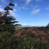 猫越岳(1034m) 猿山(1000m)・浄蓮の滝 天城の太郎杉