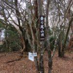 登り尾(1056m)・静岡県賀茂郡河津町梨本