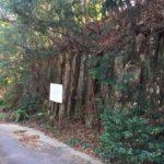 高塚(580.5m)・愛知県北設楽東栄町
