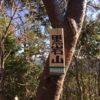 黒岩山(482m)・静岡県掛川市上西之谷