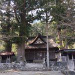 精進諏訪神社(精進の大杉・諏訪神社の大杉)・旧 中道往環