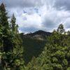 箒木山(641m) 向山(771.9m)・静岡県浜松市天竜区