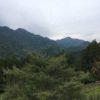 矢岳山(926.9m)・静岡県浜松市天竜区佐久間町