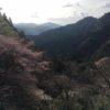 青羽根山(547.09m) 大鈴山(799.51m) 石谷山「びく石」(526m)・玉露の里
