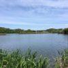 根川山(32m) 佐鳴湖一周・静岡県浜松市西区大平台