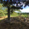 横地城址(101.7m) 横地神社・静岡県菊川市東横地地内